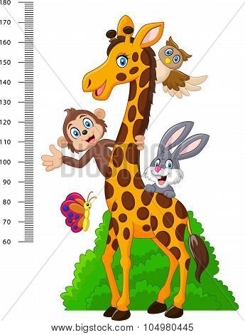 Kids height scale with funny animals