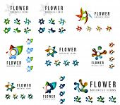 Set of company logotype branding designs, flower blooming concept icons isolated on white poster