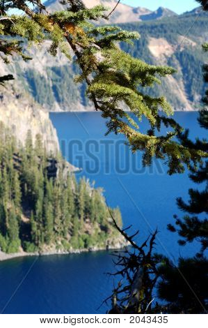 View Of Crater Lake Through Trees