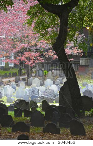 Historic Landmark Cemetery In  Boston, Massachusetts