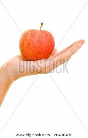 Hand Offering An Apple