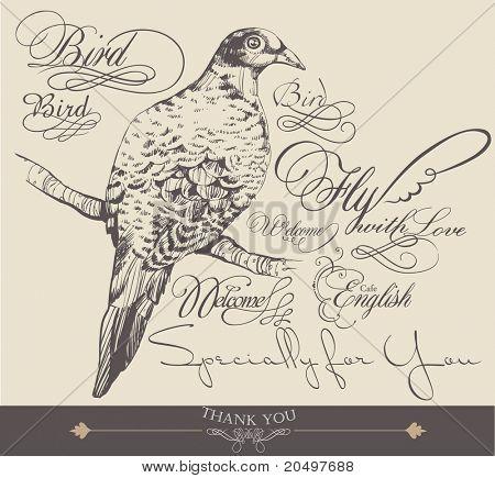 hand-drawn bird with elegance calligraphy design 2