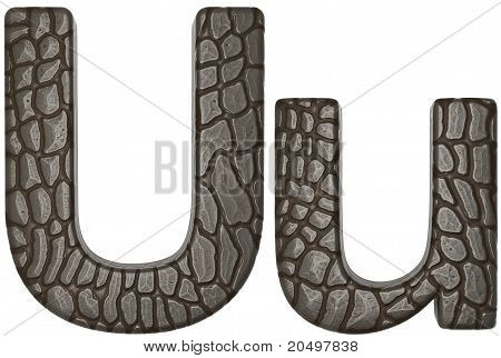 Alligator Skin Font U Lowercase And Capital Letters