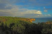 Sea Shore With Sandstone Cliff And Green Subtropical Vegetation poster