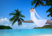 stock photo of wedding couple  - beautiful couple on the beach in wedding dress - JPG