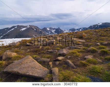 Rain Over Alpine Tundra