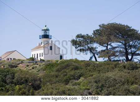 Old Point Loma Lighthouse And Tree