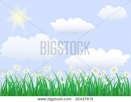 green grass under blue sky with sun an clouds