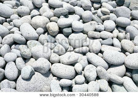 Large granite pebble of sea coast.