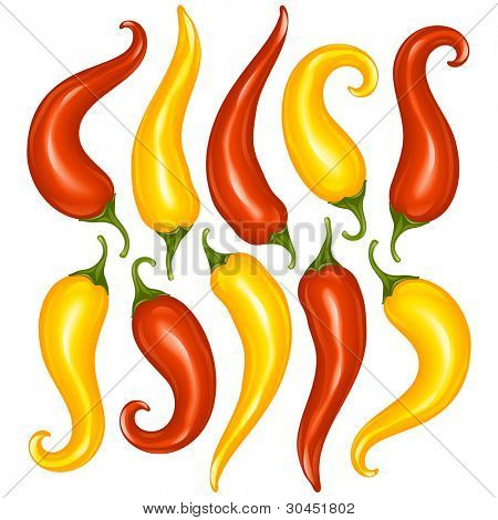 Vector Hot chilli pepper set isolated on white background. Red and yellow