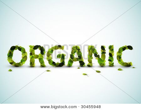 Organic - vector word made from fresh green leafs on a blue background