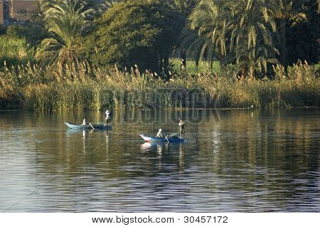 Nile Waterside Scenery Between Aswan And Luxor