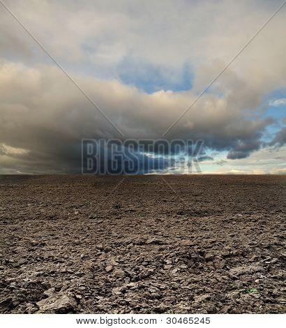 Potato Field Before Rain Under Blue Sky Landscape