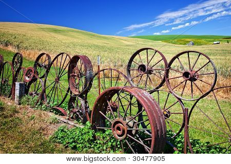 Steel Wheel Fence Green Wheat Grass Blue Skies Palouse Washington State