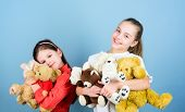 Kids Adorable Cute Girls Play Soft Toys. Happy Childhood. Child Care. Sisters Best Friends Play. Swe poster