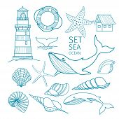 Set Of Marine Objects - Shells, Whale Tail, Starfish, Lifeline, Whale, House, Lighthouse. Hand-drawn poster