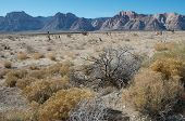 image of semi-arid  - A typical arid Arizona landscape with mountains and prairie - JPG