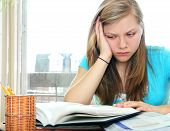 image of teenage girl  - Teenage girl studying with textbooks looking unhappy - JPG
