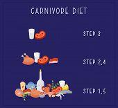 Carnivore Diet - Vector. Carnivore Diet - Steps. Excellent For Poster, Banner, Article Illustration poster
