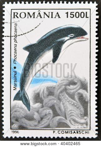 ROMANIA - CIRCA 1996: A stamp printed in Romania shows dolphin circa 1996