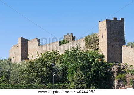 Fortified walls. Viterbo. Lazio. Italy.
