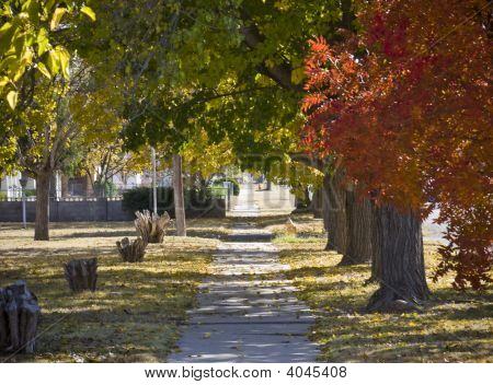 Sidewalk In Autumn