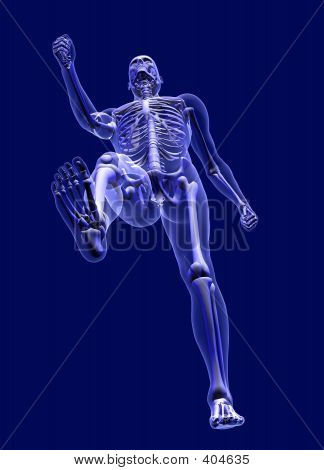 X-ray Man Walking From Below