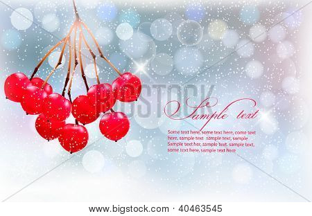 Holiday background with Christmas branch with red berries. Vector illustration.