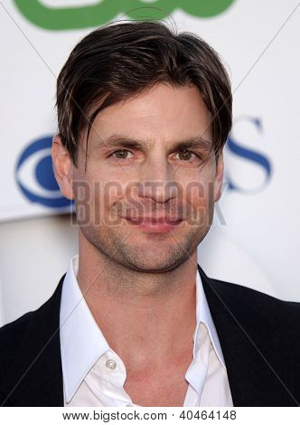 LOS ANGELES - AUG 03:  GALE HAROLD Summer TCA Party 2011 - CBS / SHOWTIME / CW   on August 03, 2011 in Beverly Hills, CA