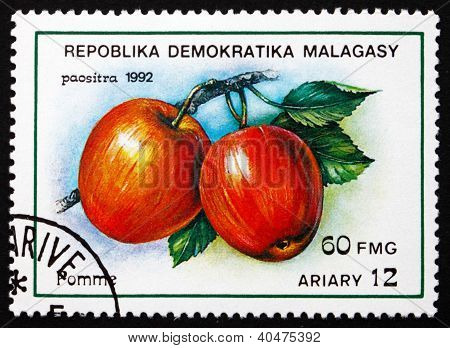 Postage stamp Malagasy 1992 Apples, Malus Domestica