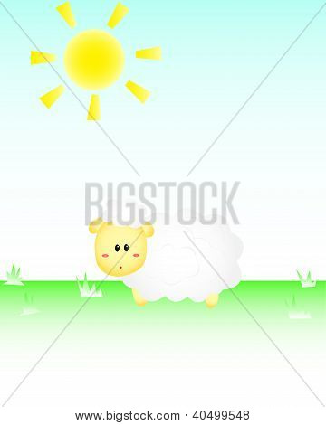 Sheep In the Sun