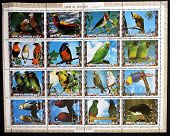 UMM AL QIWAIN - CIRCA 1973: Collection stamps printed in Umm al Qiwain shows Parrots circa 1973