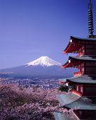 picture of tabernacle  - Japan Hakone Mt Fuji - JPG