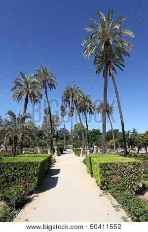 Maria Luisa Park In Sevilla, Spain
