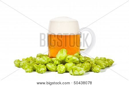 Glass Of Beer With Foam And Hop