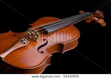 Violin - Musical instrument