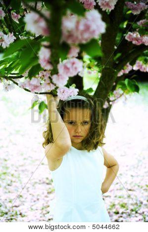 Princesa Cruz