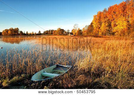 Glorious autumn morning