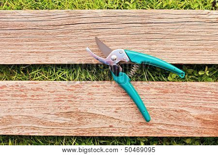 Pruner On Wood Board