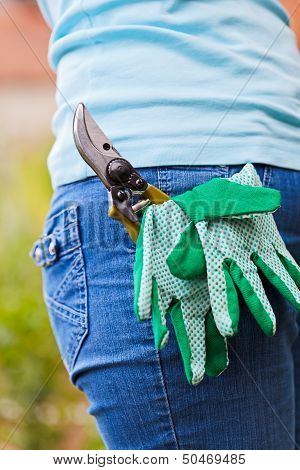 Pruner And Gloves In Pocket