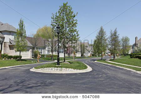 Suburban Neighborhood In Spring