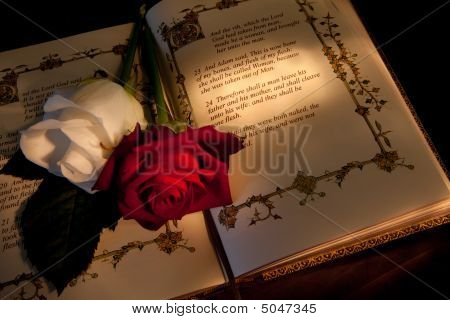 Roses And Bible