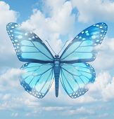 picture of monarch  - Creative inspiration and aspirations concept with a blue monarch butterfly in a sky background as a spiritual idea of hope learning and freedom as an icon of rebirth and renewal - JPG