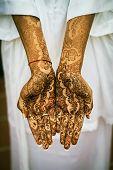 pic of henna tattoo  - Image of Henna Tattoo - JPG