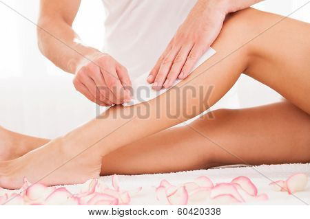 Beautician Waxing A Womans Leg