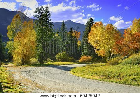 Yellow, Red And Green Aspens And Country Road In Colourful Mount