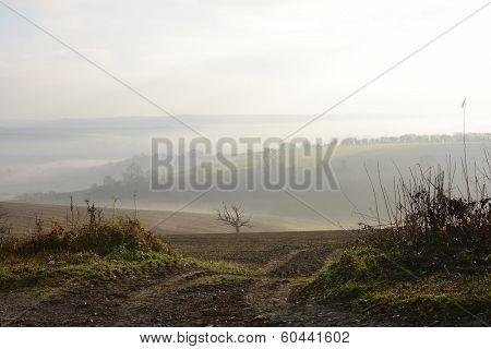 Misty Countryside Near Arundel. England