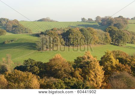Autumn Colours In The Surrey Hills. England