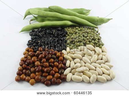 beans in different colors stock photo