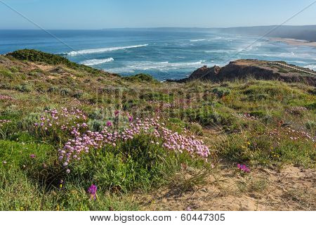 bordeira beach in South-West Alentejo and Costa Vicentina Natural Park, Portugal - spring  morning